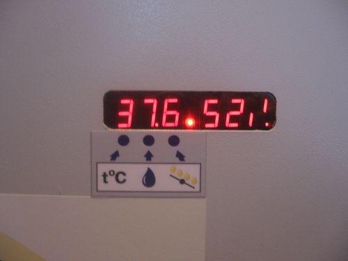 temperatura-v-inkubatore_2