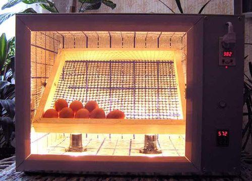 inkubator-s-avtomaticheskim-perevorotom_5