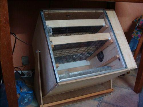 Инкубатор для гусиных яиц своими руками: чертежи, схемы, фото и видео
