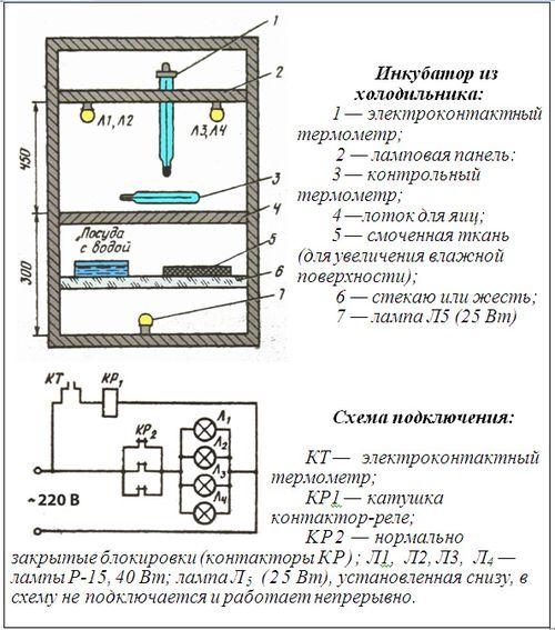 kak-sdelat-inkubator_4