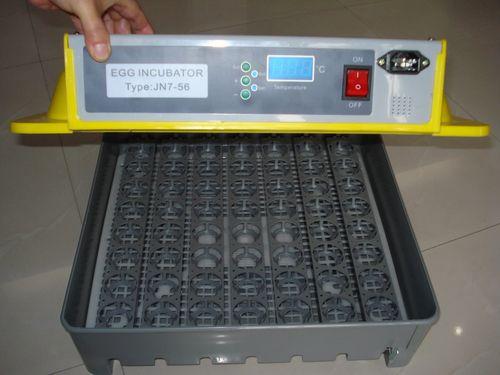 kak-vybrat-inkubator_6