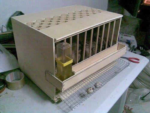 konstruiruem-inkubator-perepelov_5