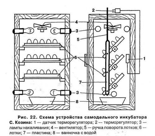 konstruiruem-inkubator-perepelov_8