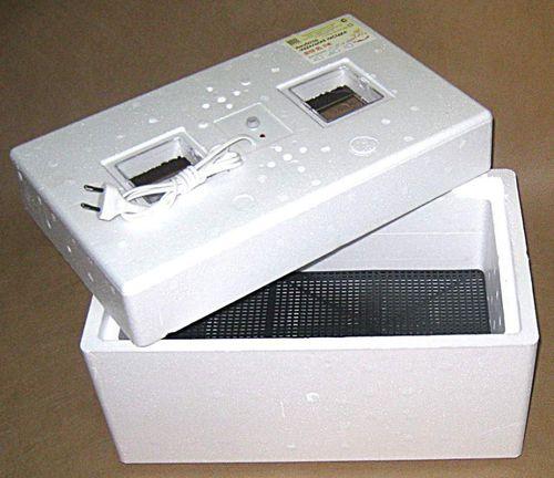 kurinye-yajca-v-inkubatore_4