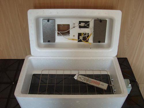 inkubator-nesushka-bi-1_5