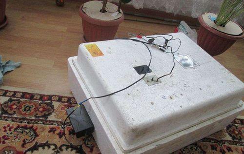 inkubator-nesushka-bi-2_3