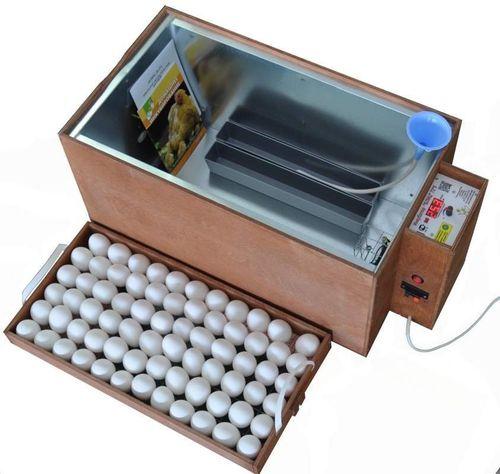 inkubatory-blic-obzor_4
