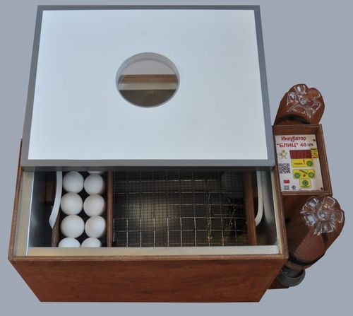 inkubatory-blic-obzor_6