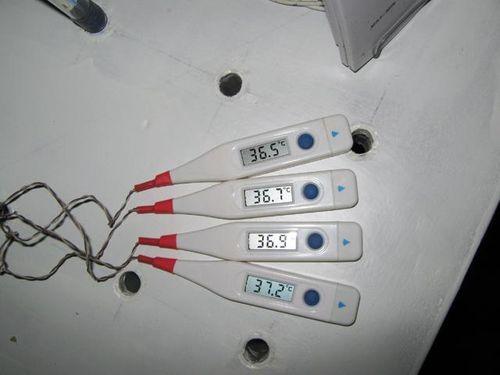 elektronnyj-termometr-inkubatora_6