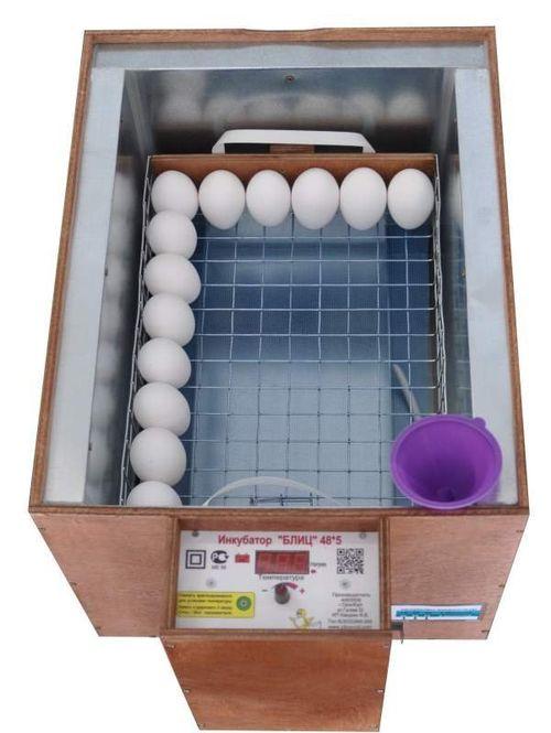 inkubator-blic-48_5