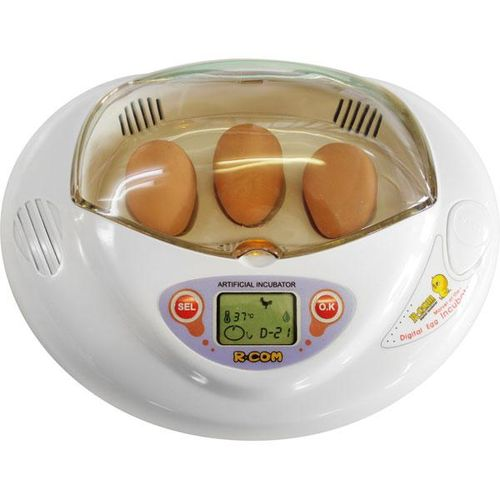 inkubator-dlya-kur_4