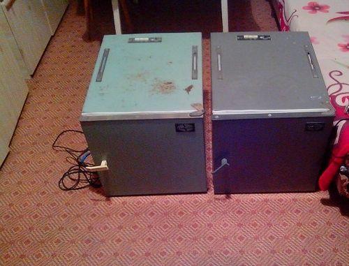 inkubator-ipx-10-petushok_5