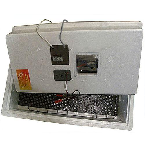 kak-pokupat-inkubatory_5