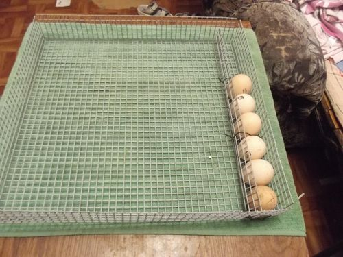 Как сделать инкубатор для яиц своими руками 27