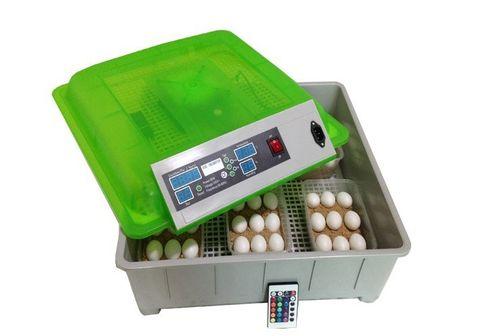 инкубатор для куриных яиц
