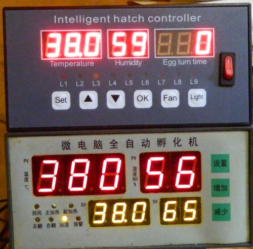 температурный режим в инкубаторе