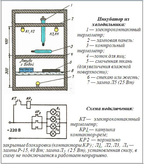 устройство инкубатора