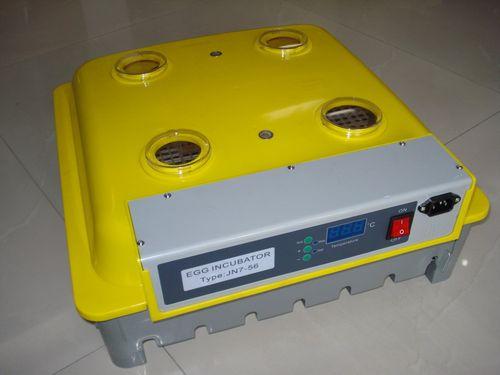 инкубатор индюшиных яиц
