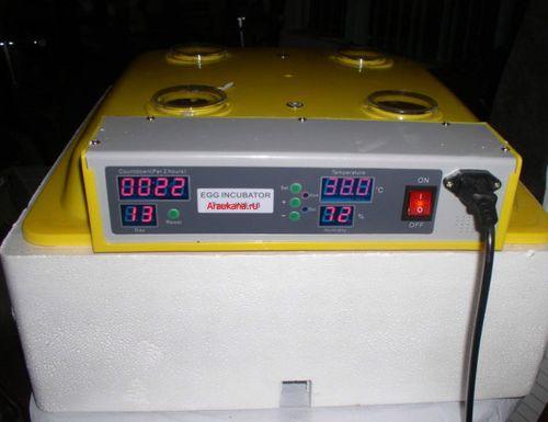 инкубатор с переворотом яиц