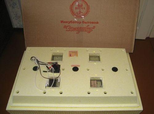 inkubator-98-yaic-zolushka_4