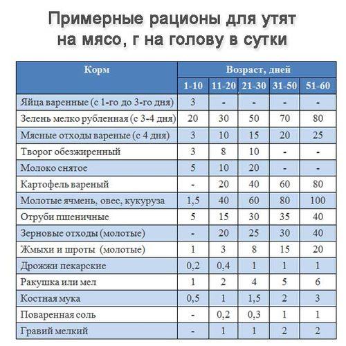 Таблица питания уток