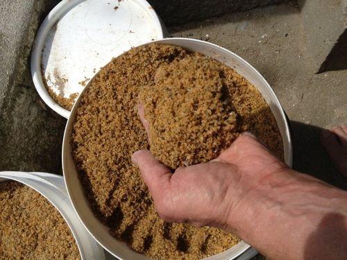 Как сделать рыбий жир своими руками