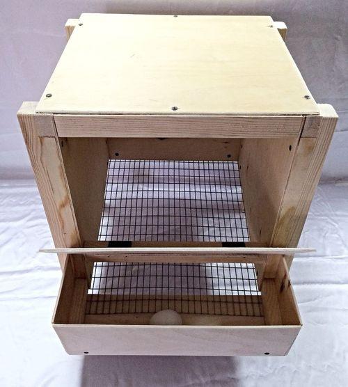 Конструкция яйцесборника для кур-несушек