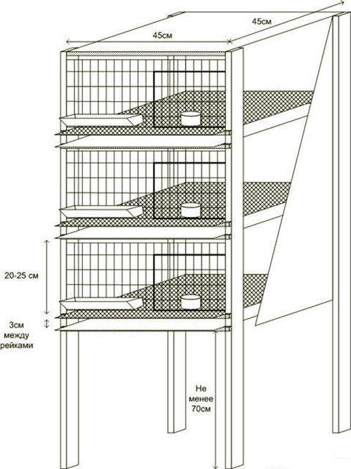 Клетки для цыплят своими руками размеры и чертежи 7200