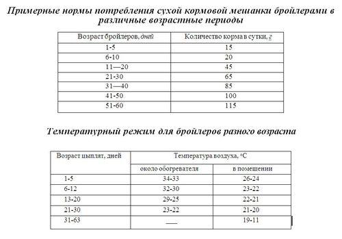 Таблица кормлений