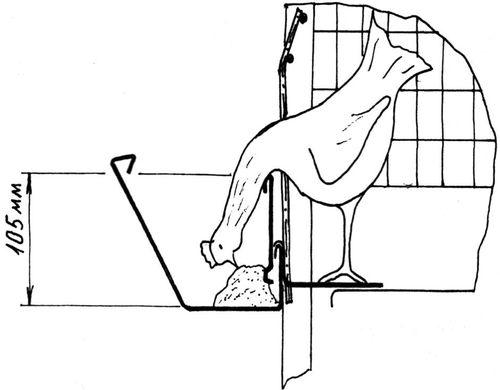 Чертежи клеток для кур несушек своими руками