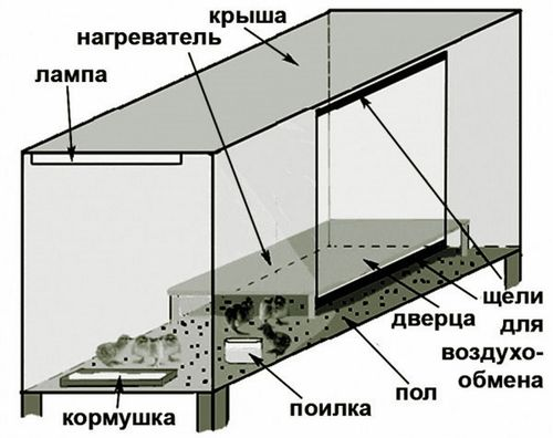Схема брудера