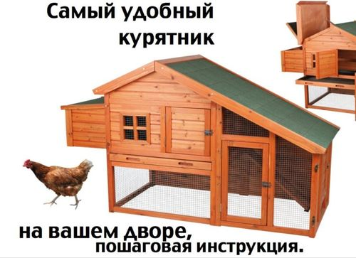 Курятник на 10 кур