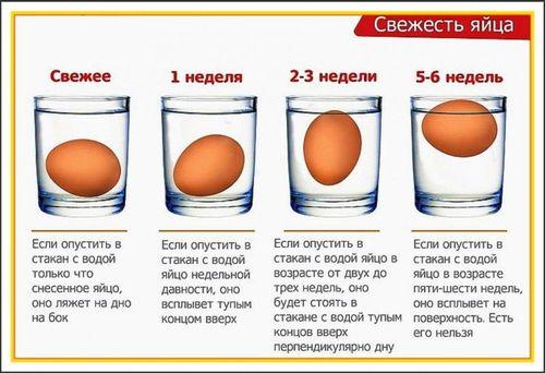 Проверка свежести яйца с помощью воды